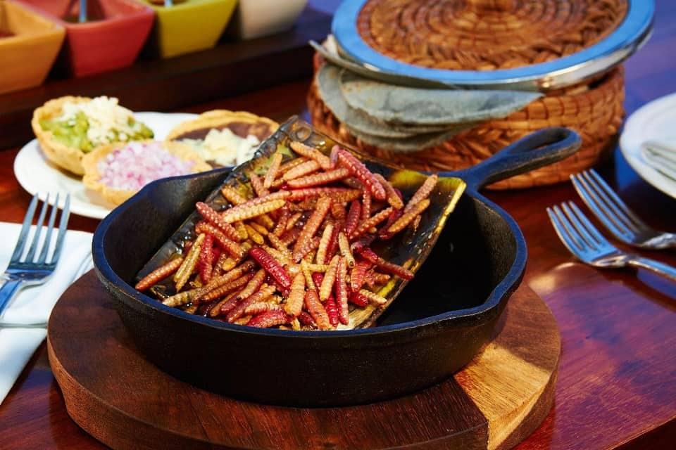 Chinicuiles – Món ăn kinh dị nhất Mexico