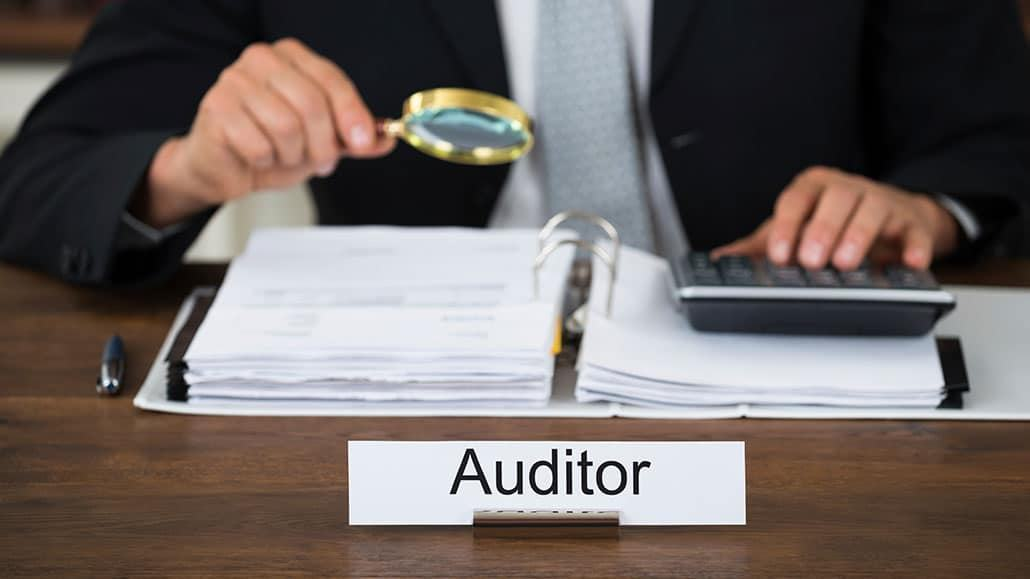 Income auditor job description