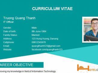 Mẫu CV xin việc IT bằng tiếng Anh