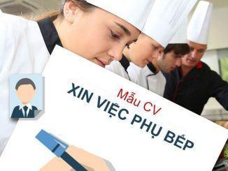 Mẫu CV xin việc phụ bếp