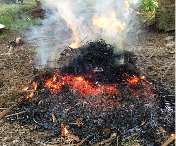 Nướng gà với lửa lớn