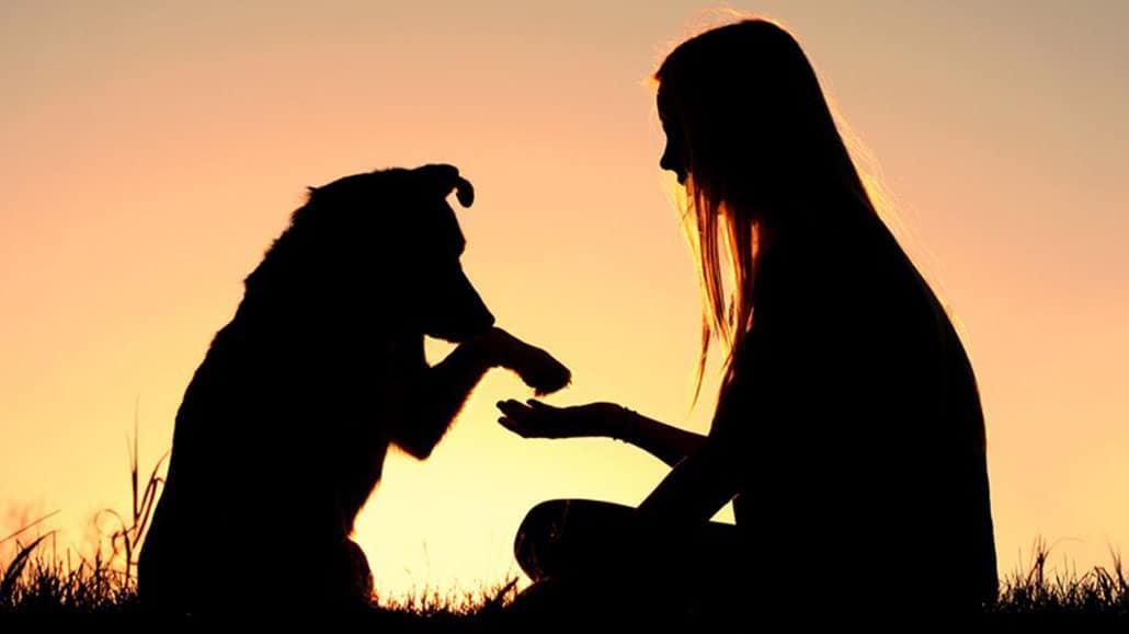 Thể hiện lòng trắc ẩn
