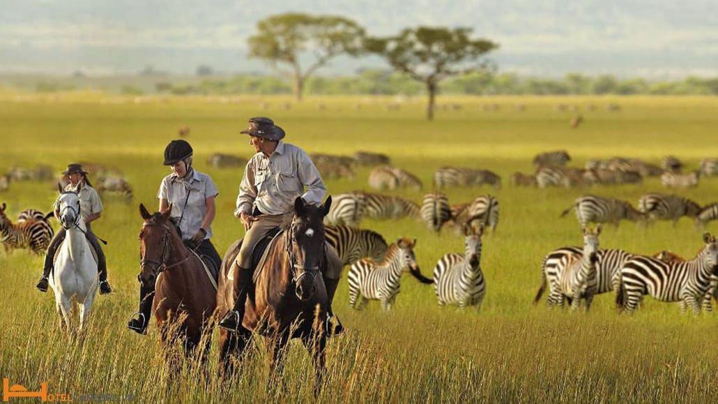 Tour du lịch thám hiểm Safari African