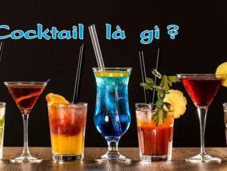 Cocktail là gì?