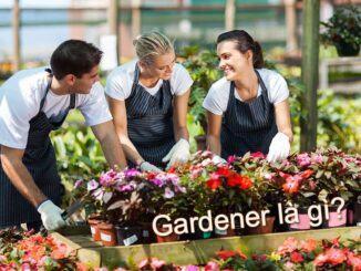 Gardener là gì?