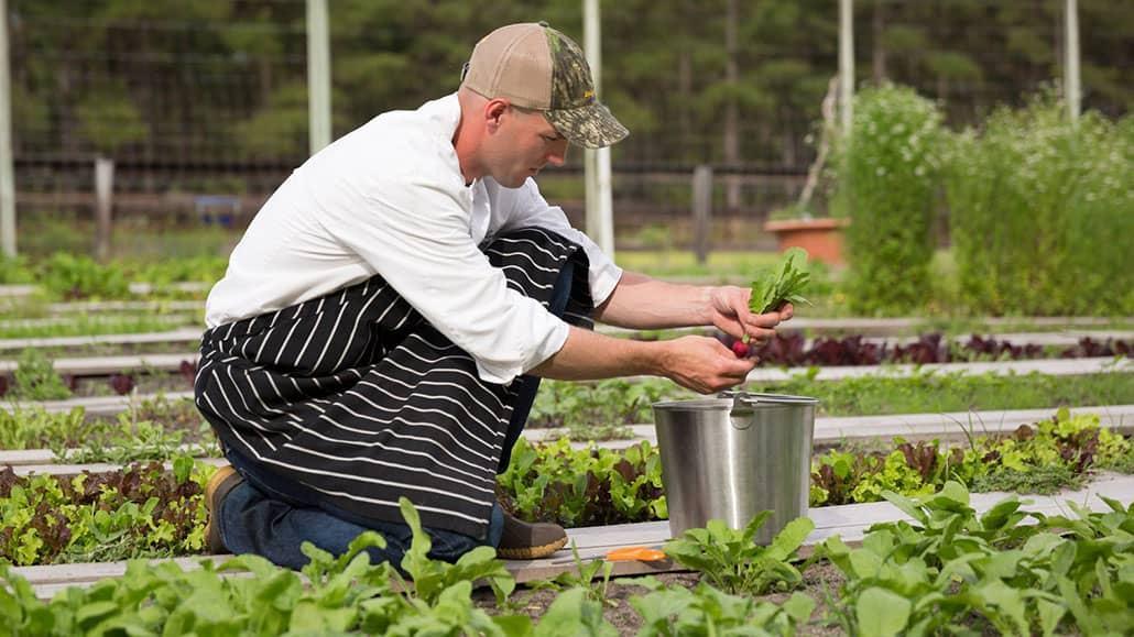 Bản mô tả công việc Gardener tại khách sạn, resort